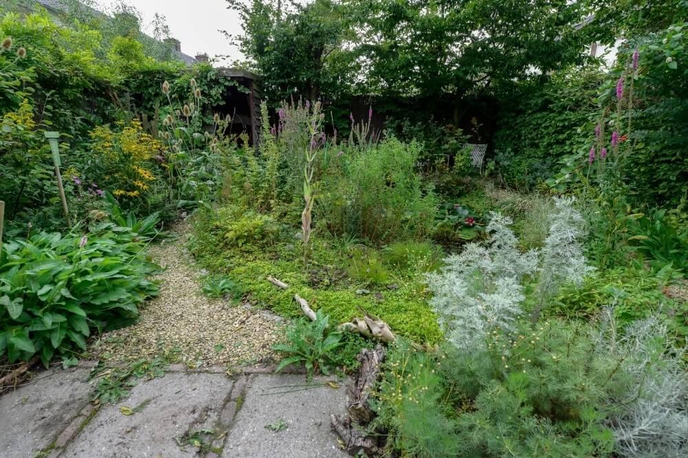 Beplantingsplan Natuurlijke Tuin : Tuinontwerp door hoveniersbedrijf hans van den berg groenvoorziening